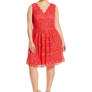 Red Lace Adrianna Papell Eyelet Dress 22 Plus